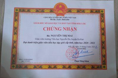 Những thành tích đã đạt được của thầy và trò trường TH Nguyễn Du năm học 2020 – 2021